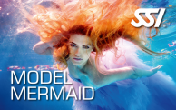 Mermaid Model