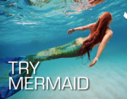 Try Mermaid